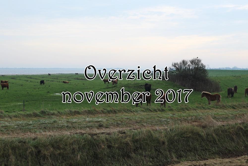 Overzicht van november 2017