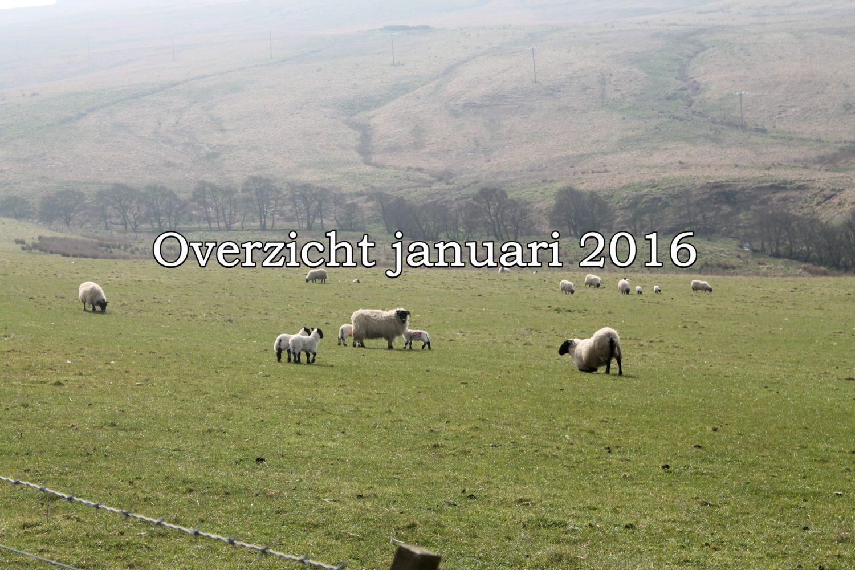 Overzicht van januari 2016