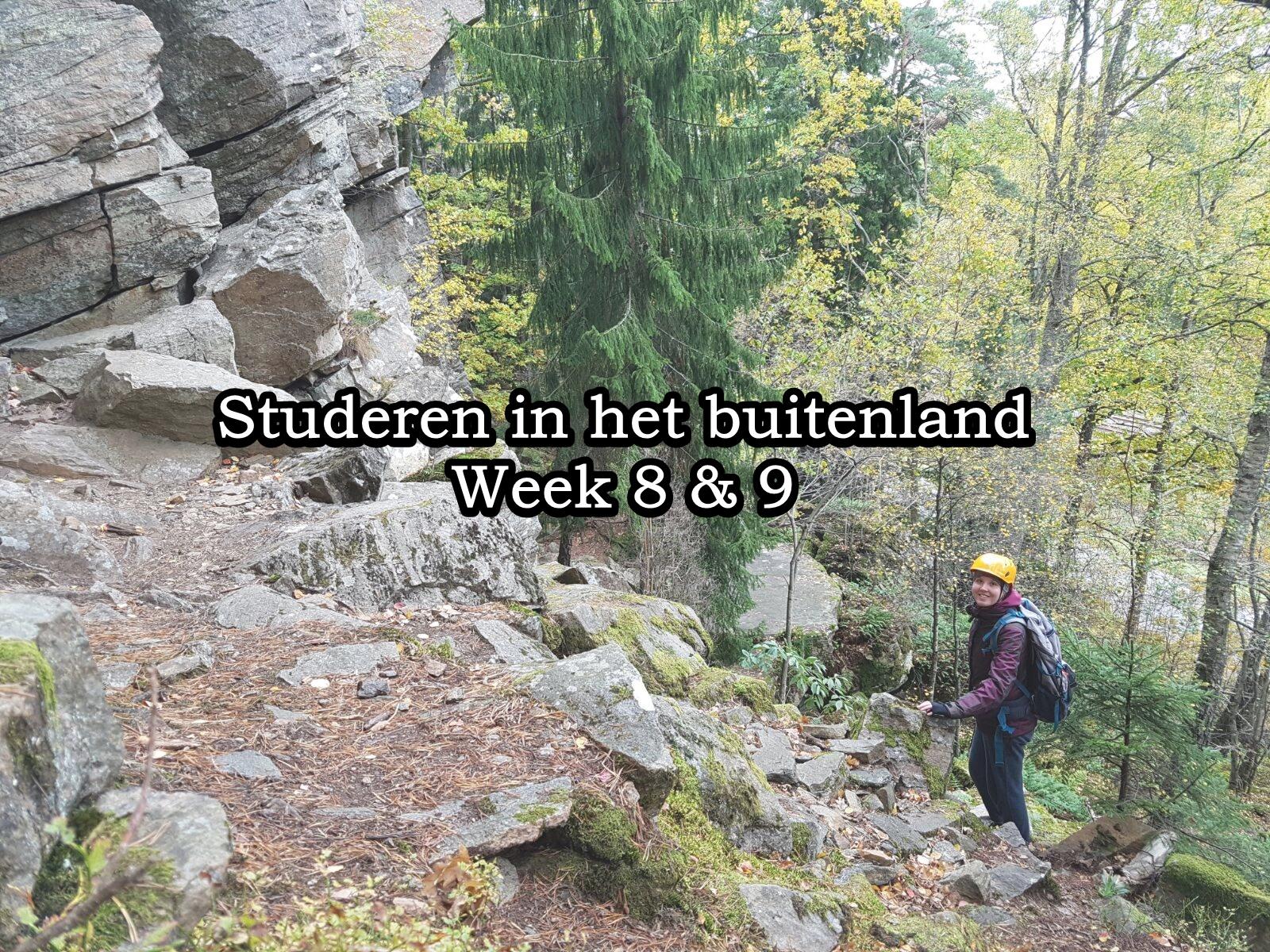 Week 8 & 9