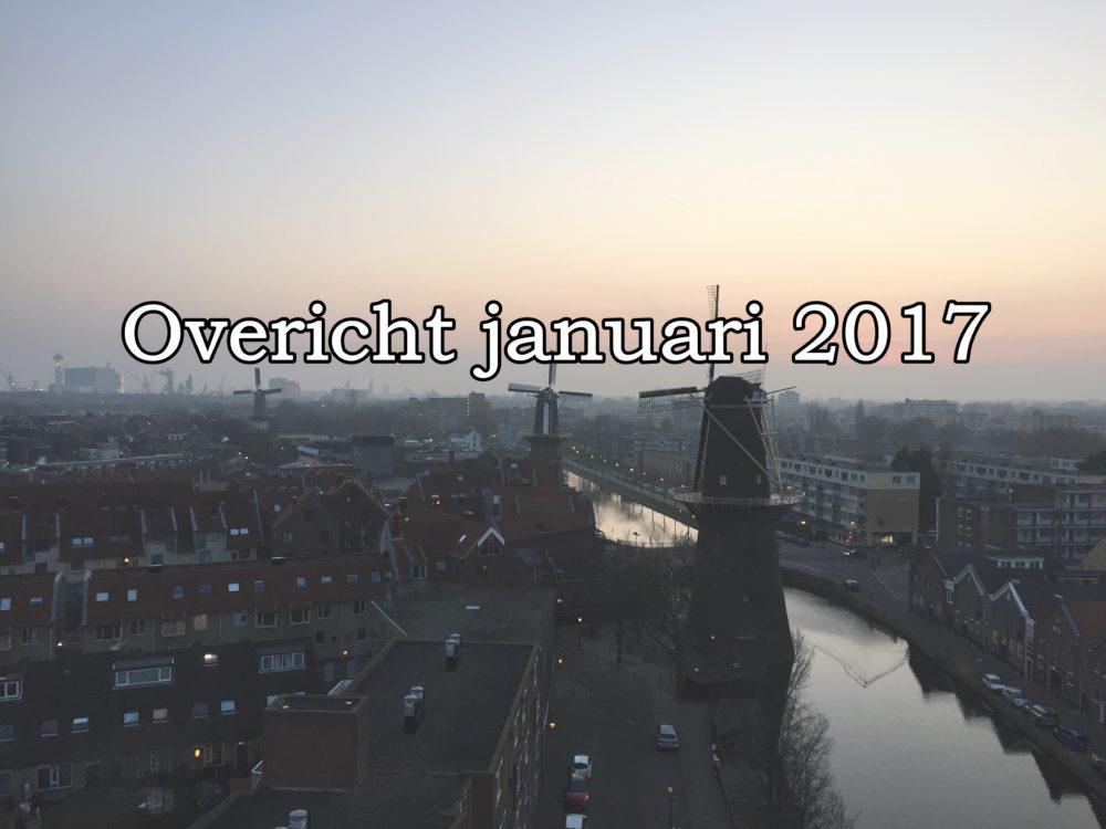 overzicht van januari 2017