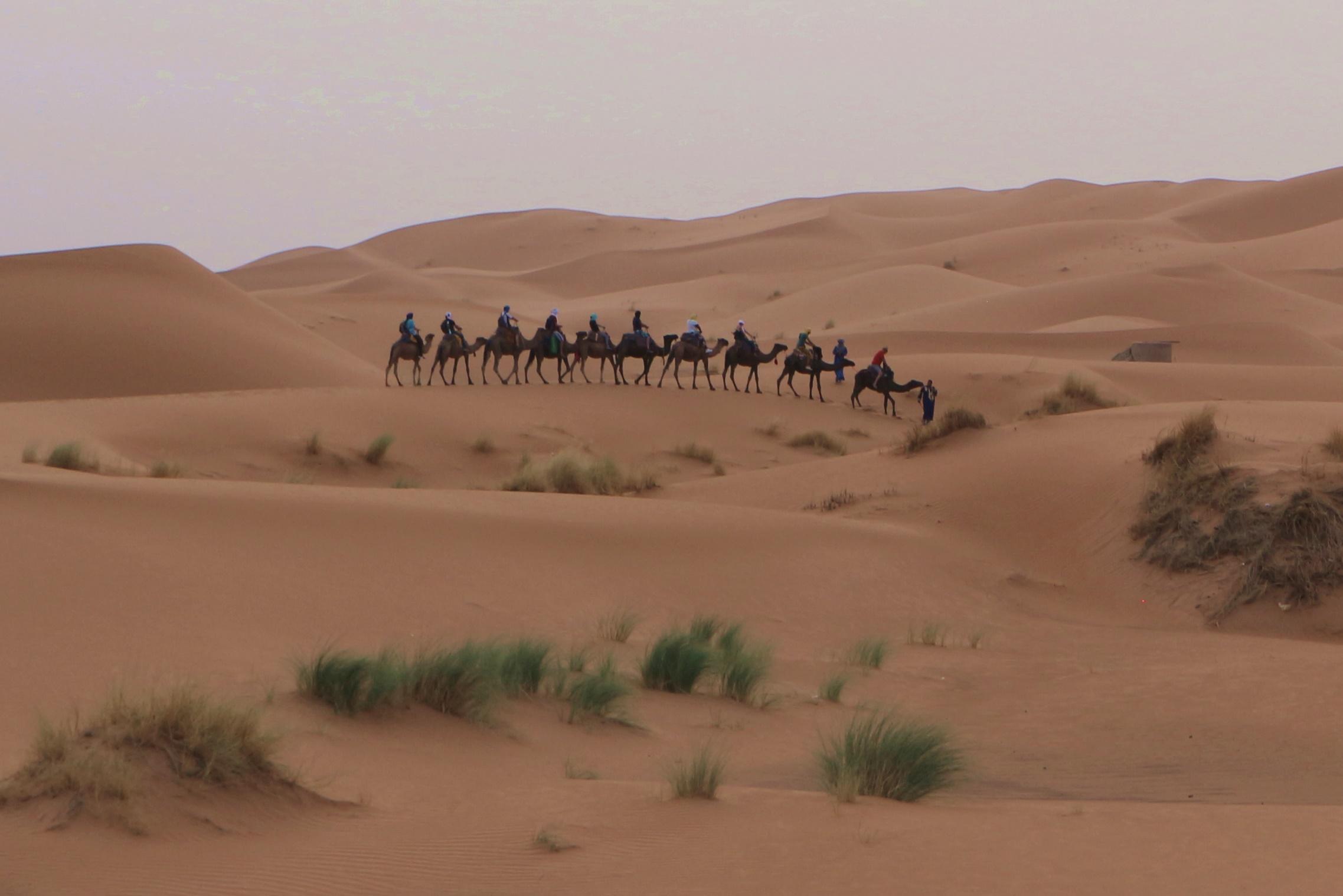 kamelentocht Erg Chebbi - oman
