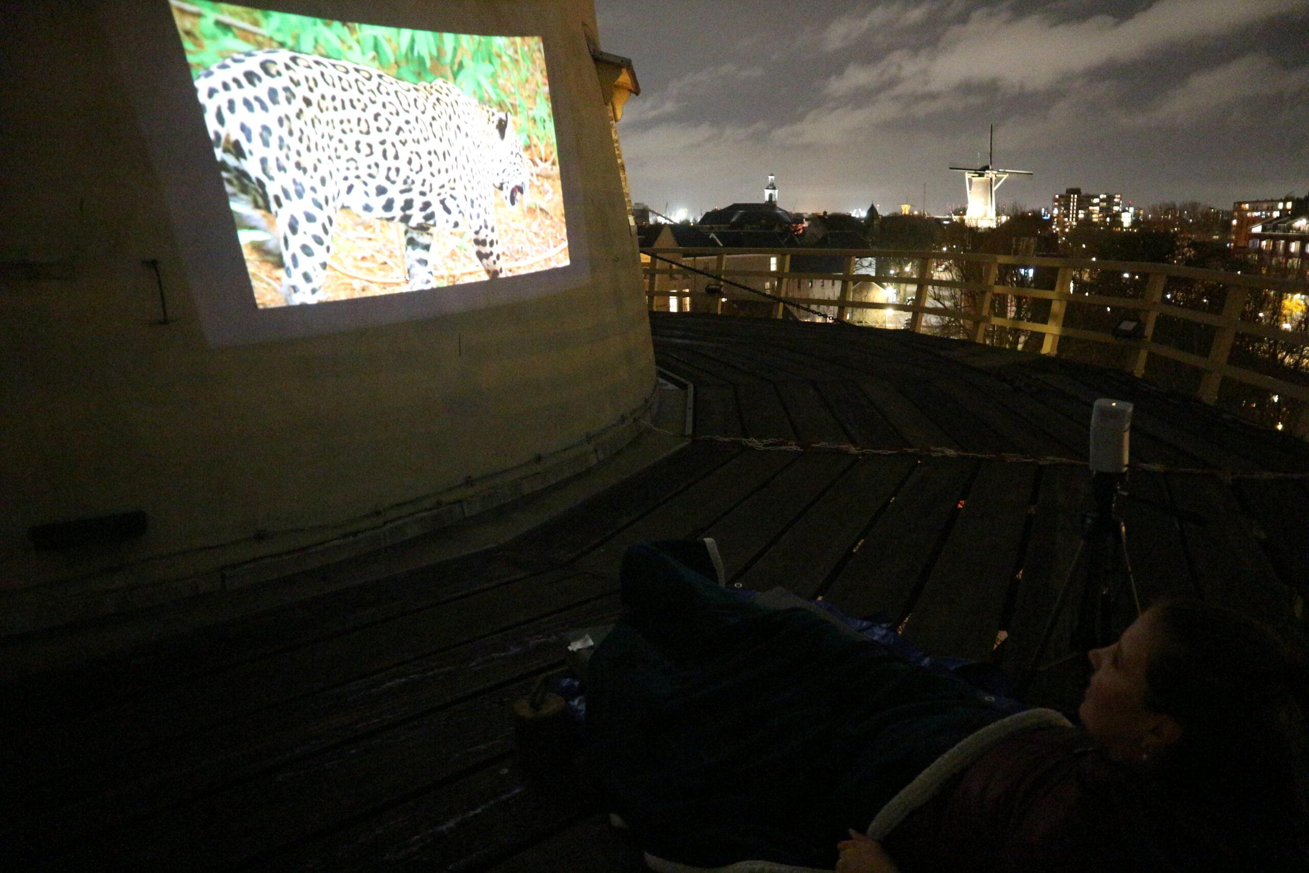Benq GV1 projector